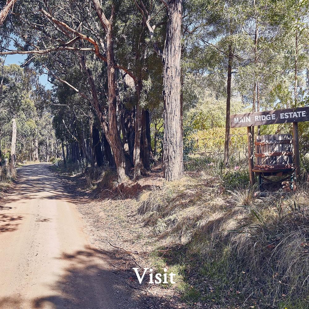 Main Ridge Estate | Mornington Peninsula Winery | Cellar Door | Vist Us
